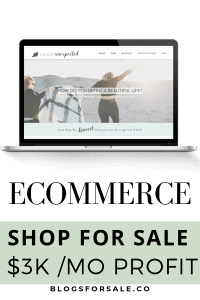 profitable ecommerce shop for sale