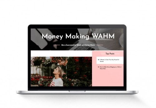 starter mom blog for sale moneymakingwahm