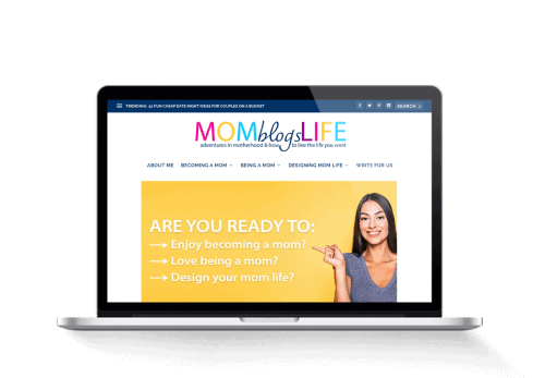 motherhood and pregnancy blog for sale