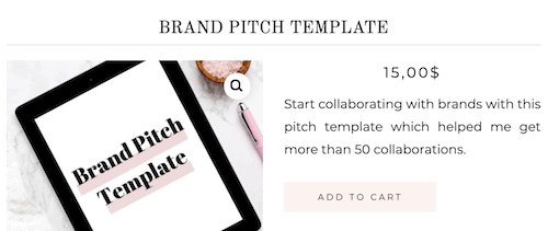 blogging and social media tips blog for sale brand pitch template