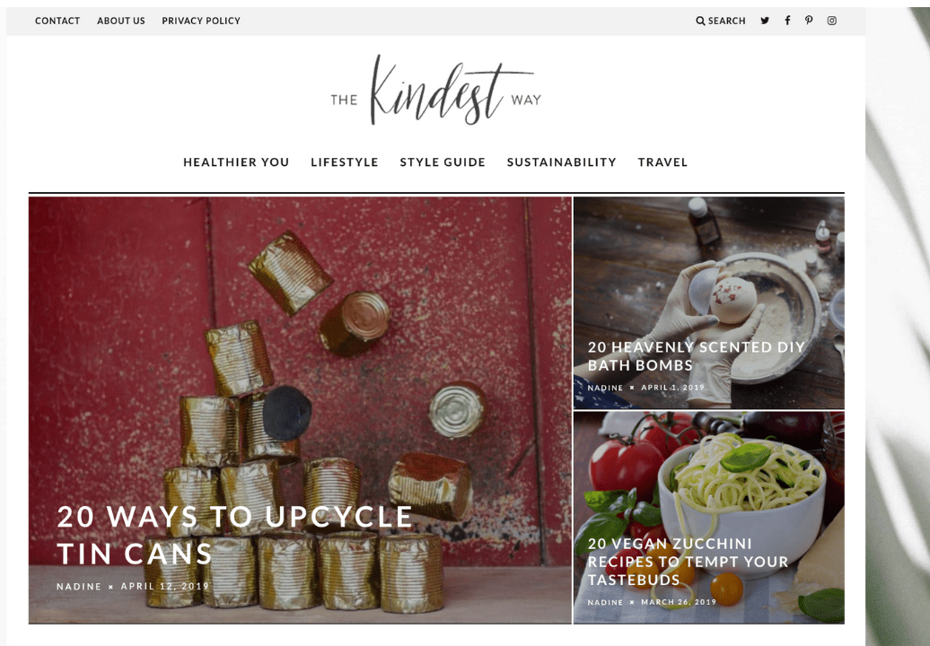 profitable sustainable lifestyle blog for sale