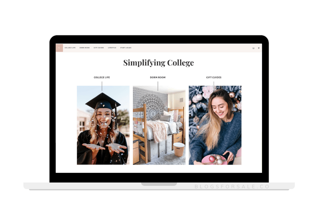 premium domain profitable college niche site for sale
