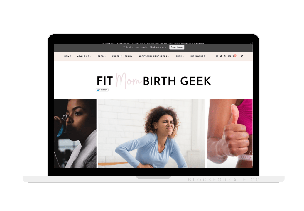 fit mom blog for sale