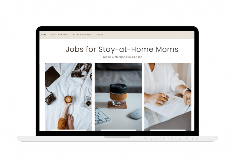 Work from home niche site for sale