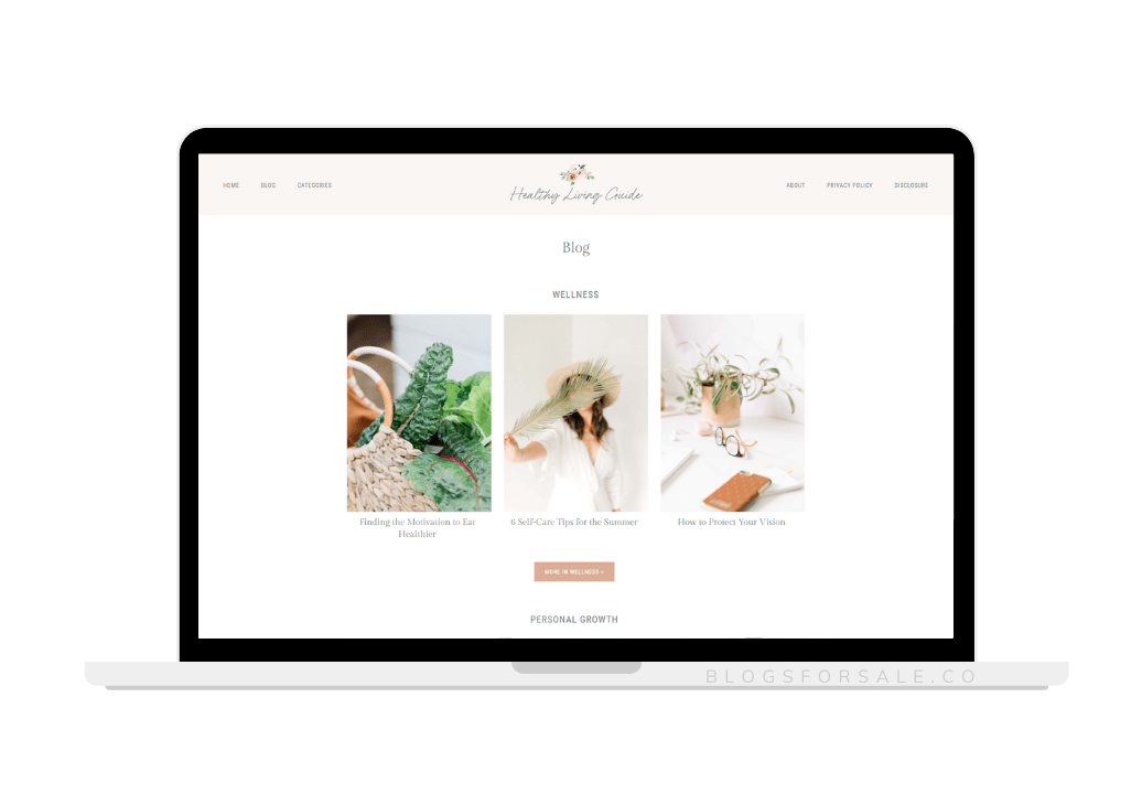 healthy living niche site for sale