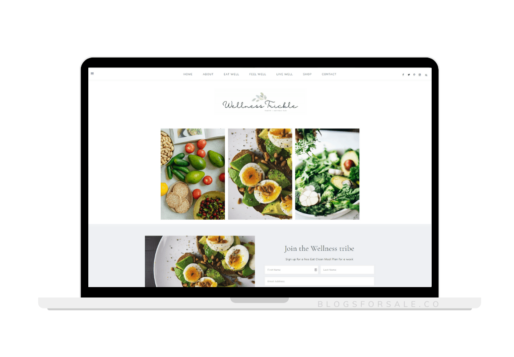 health and wellness niche site for sale