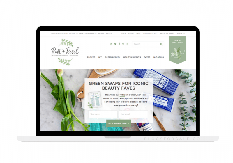 natural mom and health blog for sale