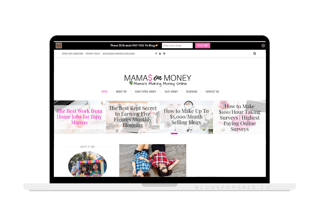 personal finance for moms niche site for sale