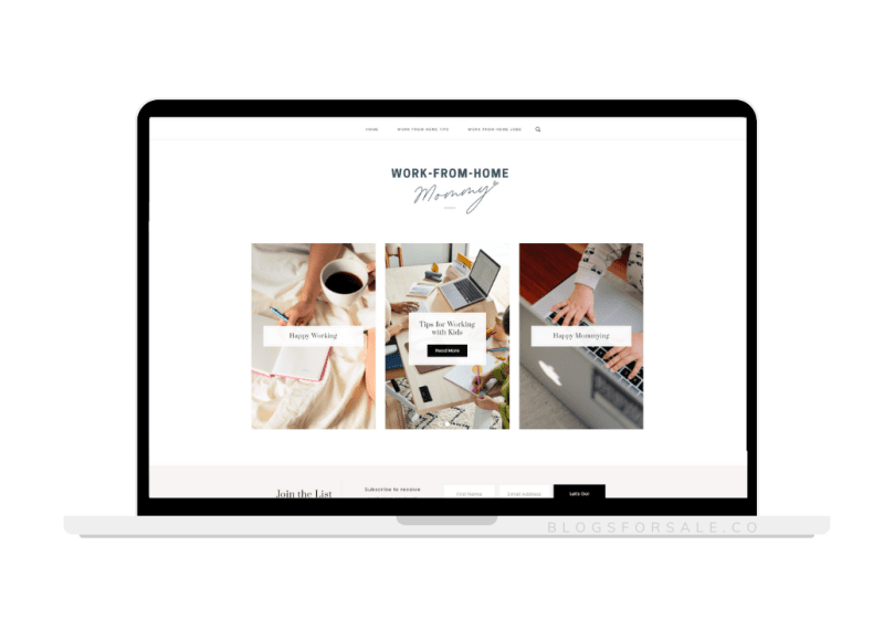 work from home mom niche site for sale