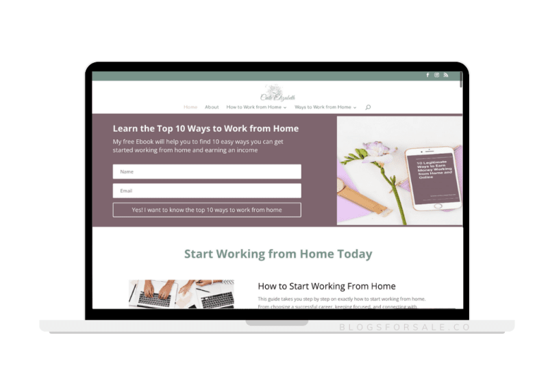 work from home mom site for sale